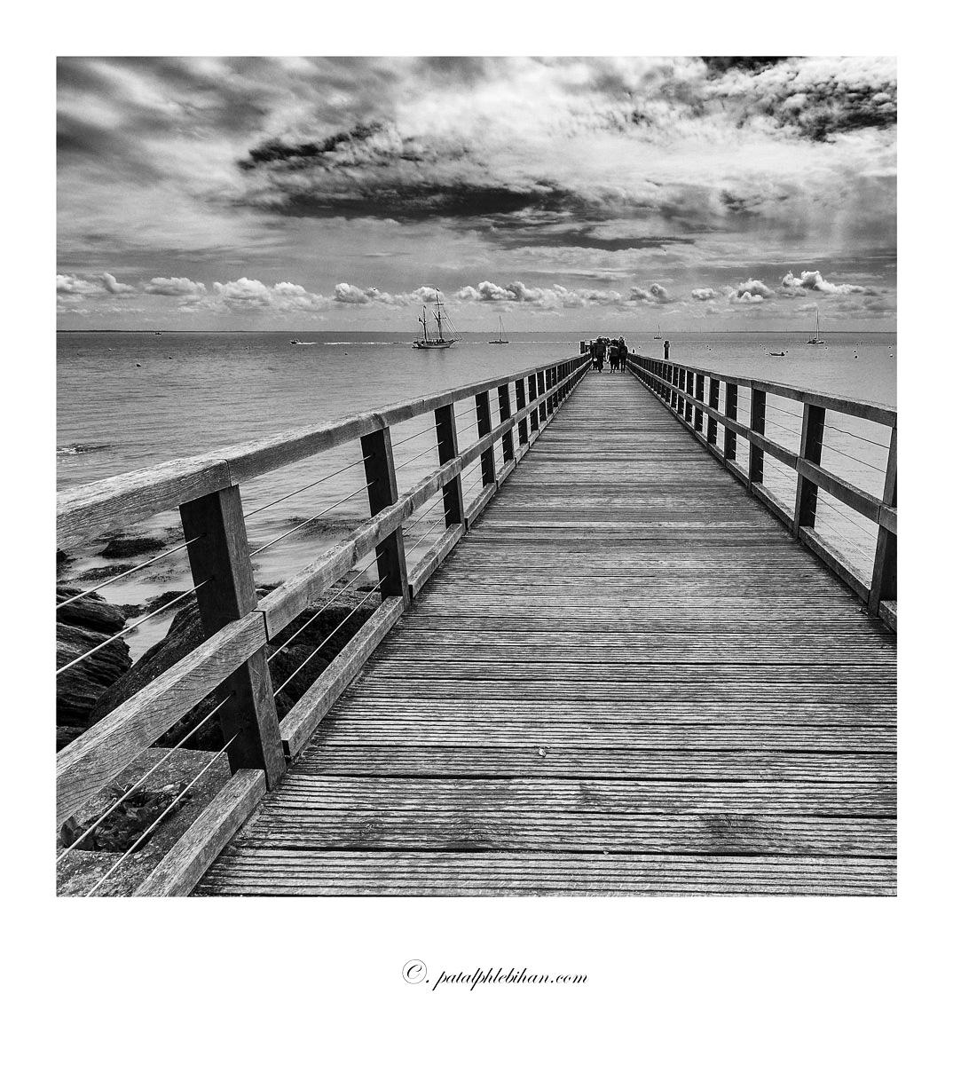 Noirmout_0269-b-cnbpola-w