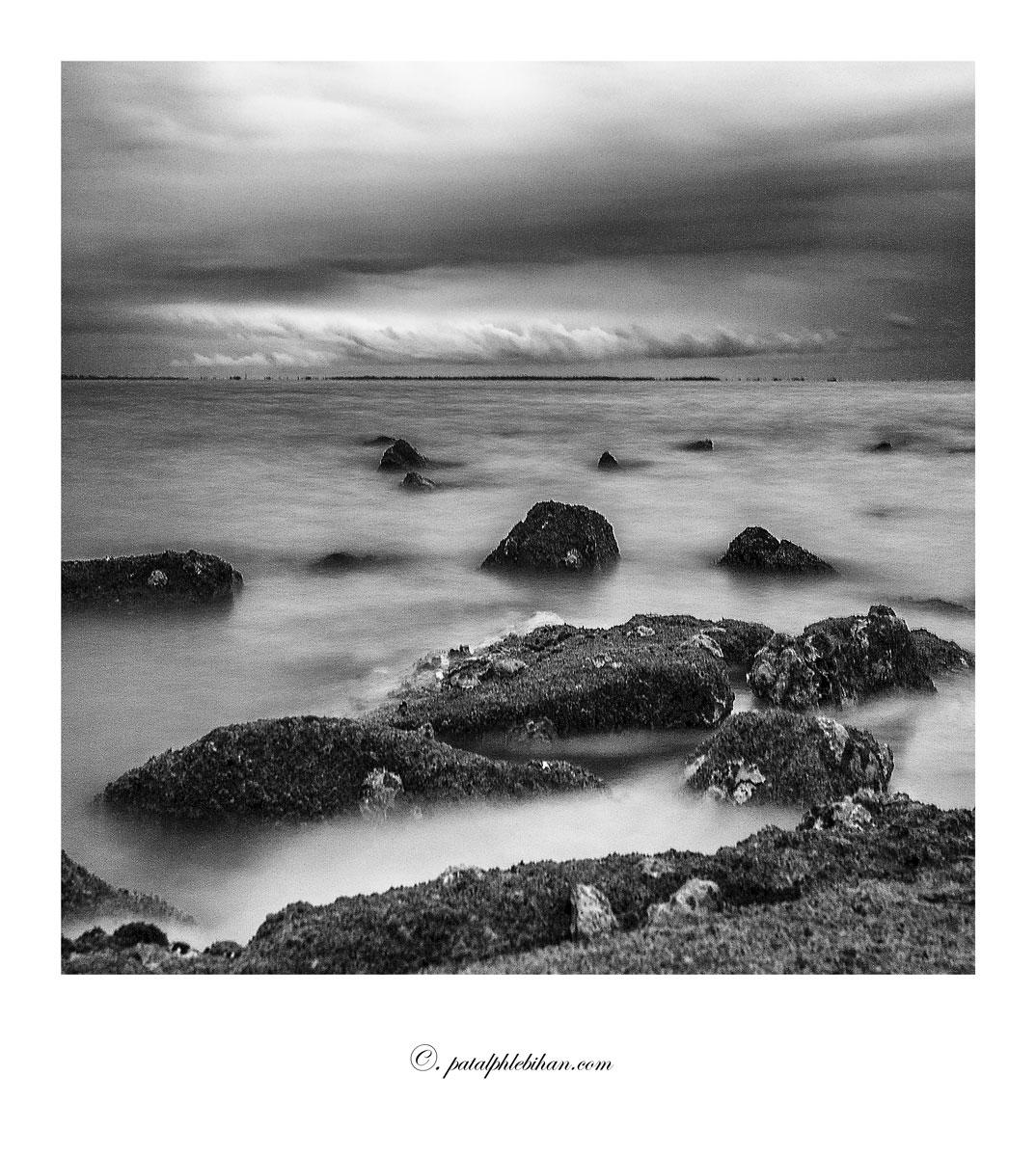 Noirmout_0355-acnbpolaw
