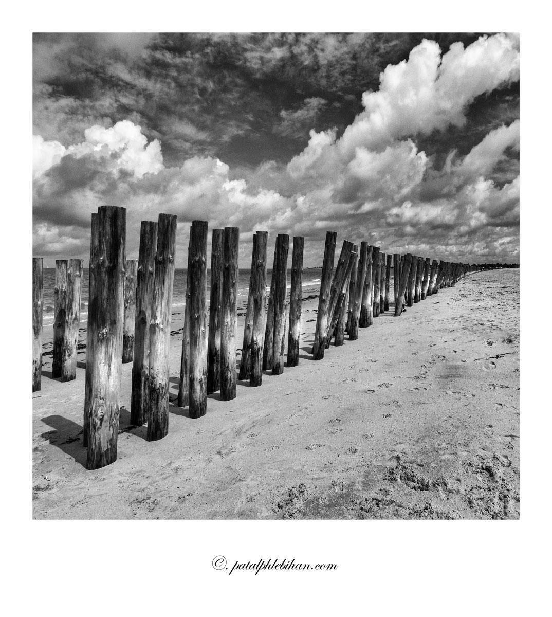 Noirmout_0420-acnbpolaw